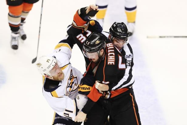 Ritchie fighting- predators
