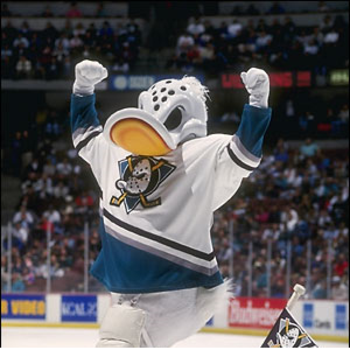 The Beginning of Wild Wing Sports-Swag.png