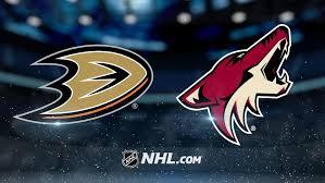 ducks vs coyotes- by NHL