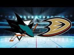 ducks vs sharks