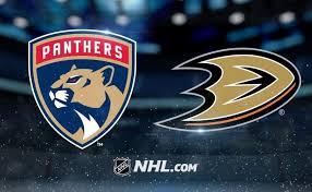 2- Ducks vs Panthers