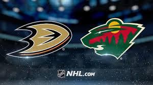 2- ducks vs wild